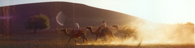 敦煌・鳴砂山を横切るラクダ隊