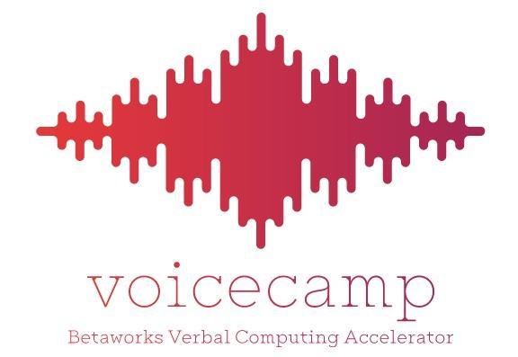 voicecamp-logo.jpg